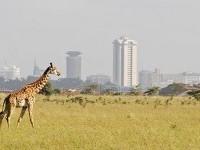 Nairobi ~ Maastricht
